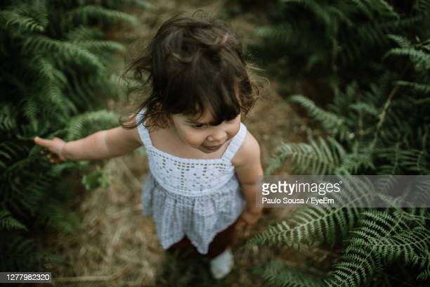 high angle view of girl and plants on land - reality fernsehen stock pictures, royalty-free photos & images
