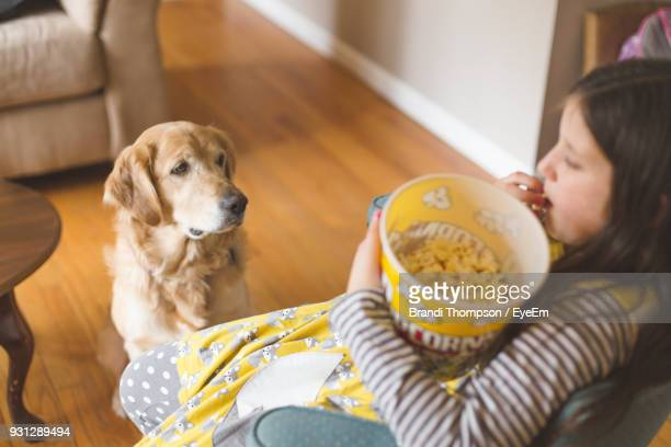 high angle view of girl eating popcorn while sitting at home - dog eats out girl stock pictures, royalty-free photos & images