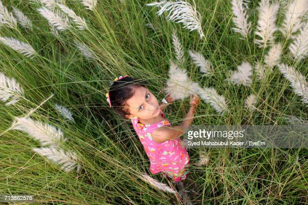 high angle view of girl in grass - bangladeshi beautiful girl stock photos and pictures