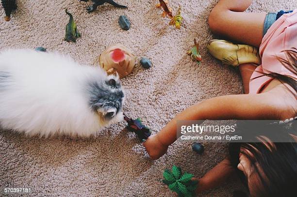 High Angle View Of Girl Playing With Toys By Cat On Carpet