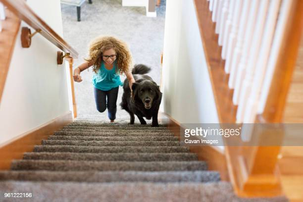 High angle view of girl with dog climbing staircase at home