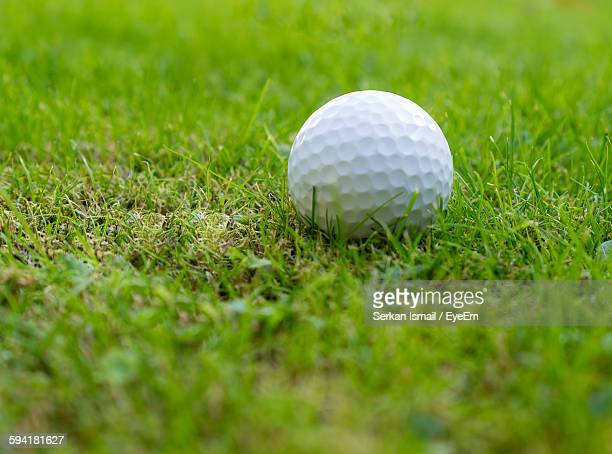 High Angle View Of Golf Ball In Lawn