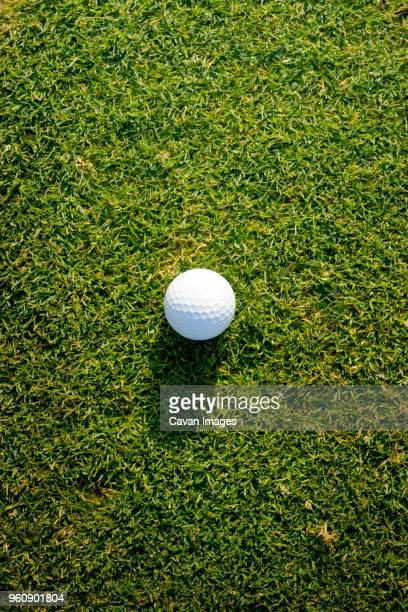 High angle view of golf ball on grass