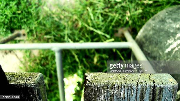 High Angle View Of Grass From Wooden Structure
