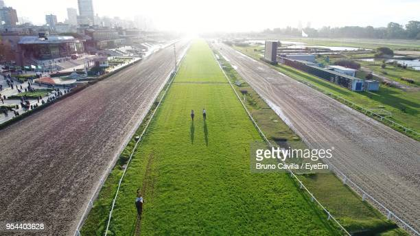 high angle view of grass in city against sky - 競馬 ストックフォトと画像