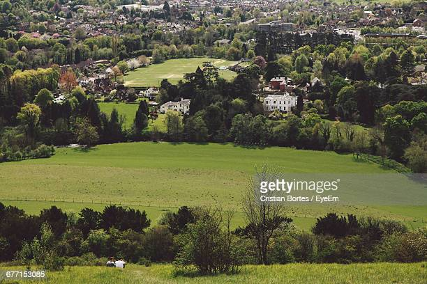 high angle view of grassy landscape - bortes cristian stock photos and pictures