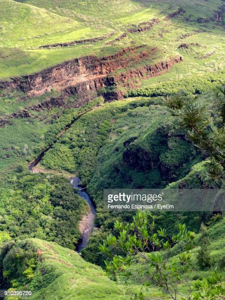 high angle view of green landscape - waimea valley stock photos and pictures