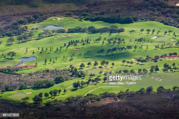 high angle view of green landscape - josh utley stock pictures, royalty-free photos & images