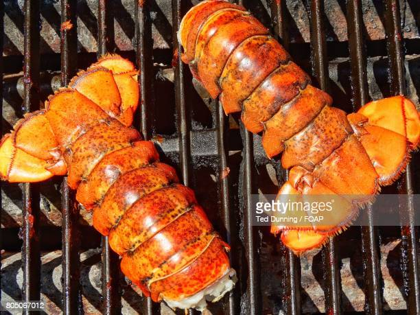 High angle view of grilled lobster