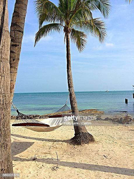 High Angle View Of Hammock Tied To Palm Trees At Beach Against Sky