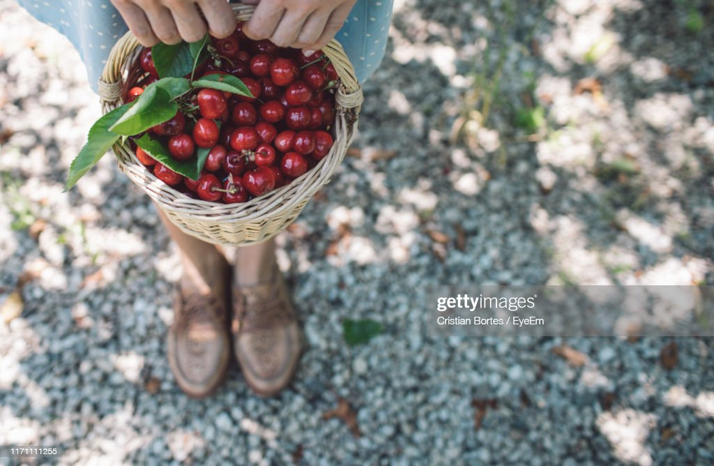 High Angle View Of Hand Holding Cherries In Basket : Stock Photo