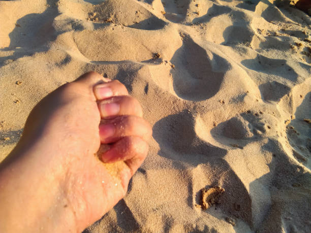 High Angle View Of Hand Holding Sand