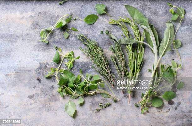High Angle View Of Herbs