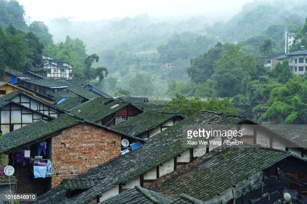 high angle view of houses and trees in city - chongqing stock photos and pictures