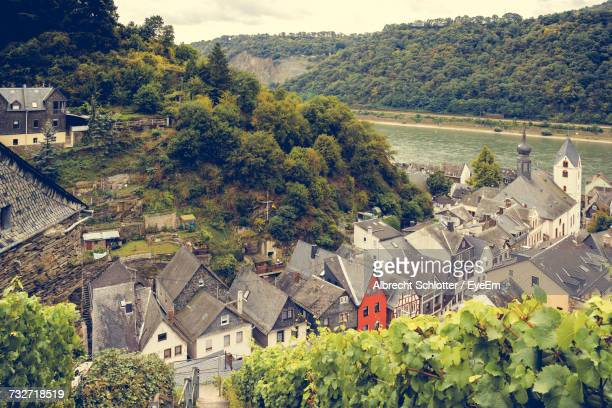 high angle view of houses and trees in town - albrecht schlotter stock photos and pictures