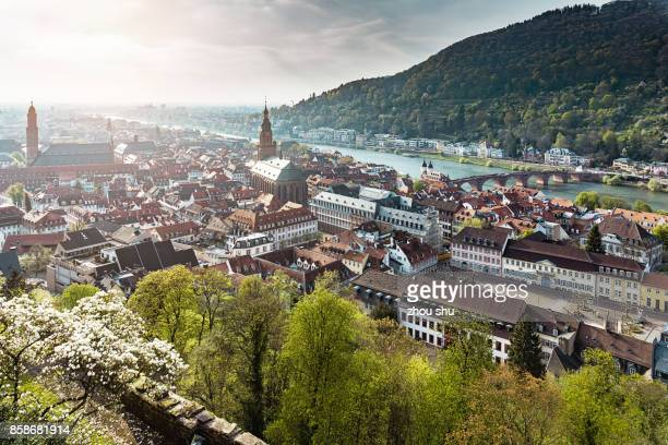 high angle view of houses in town against sky - baden württemberg stock photos and pictures