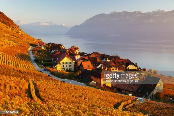 high angle view of houses in town by lake - lausanne stock pictures, royalty-free photos & images