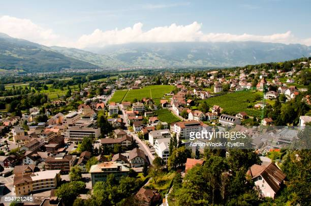 high angle view of houses in town - vaduz stock pictures, royalty-free photos & images