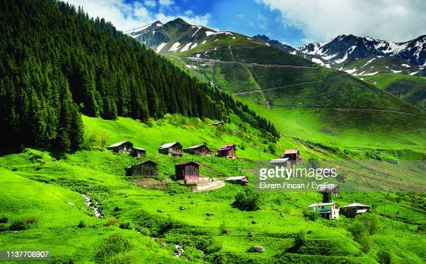high angle view of houses on green landscape - trabzon stock photos and pictures