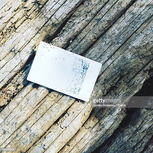 High Angle View Of Instant Photo On Driftwood