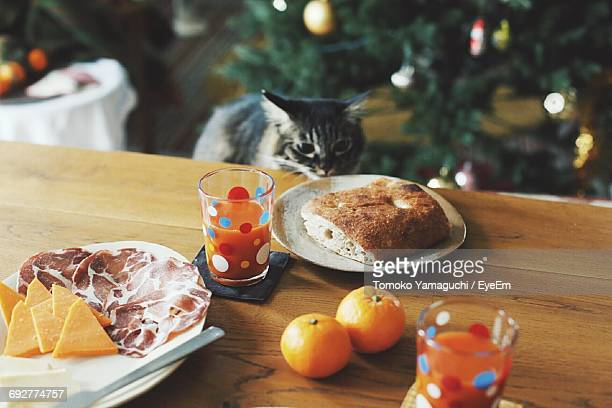 High Angle View Of Kitten Smelling Food On Table