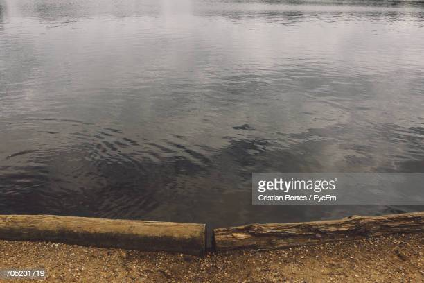 high angle view of lake at richmond park - bortes stockfoto's en -beelden