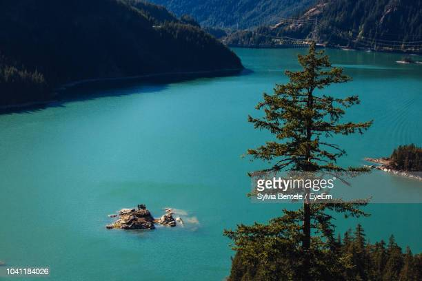 high angle view of lake by trees - diablo lake stock photos and pictures