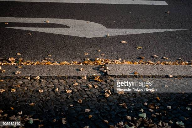 High Angle View Of Leaves On Road During Autumn