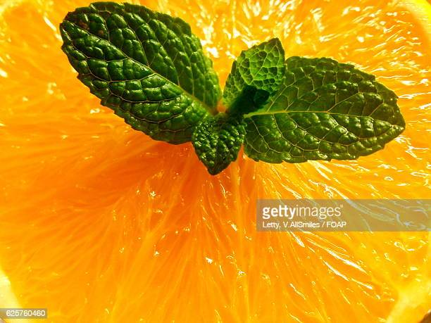 high angle view of lemon with mint leaf - lemon leaf stock photos and pictures