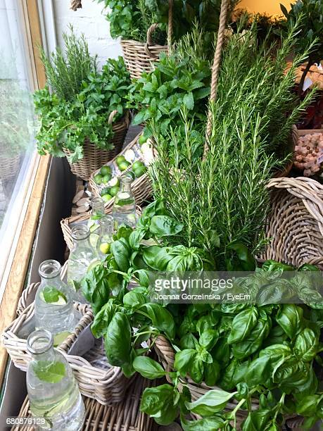 high angle view of lemonade and potted plants on window sill - ledge stock pictures, royalty-free photos & images