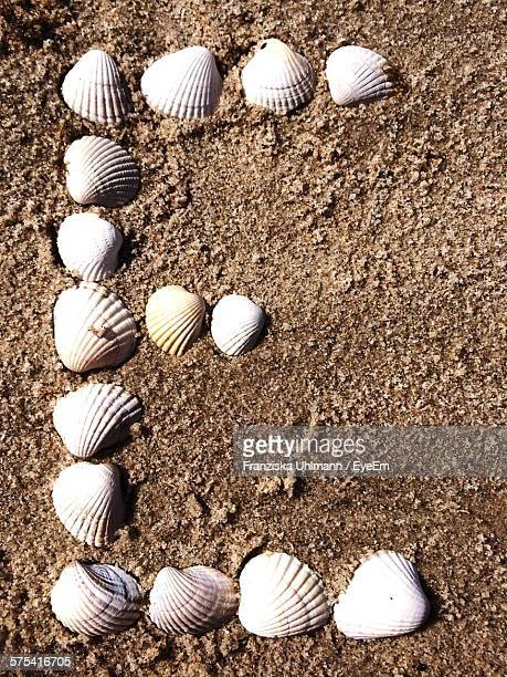 high angle view of letter e formed by seashells on sand - nature alphabet letters stock pictures, royalty-free photos & images