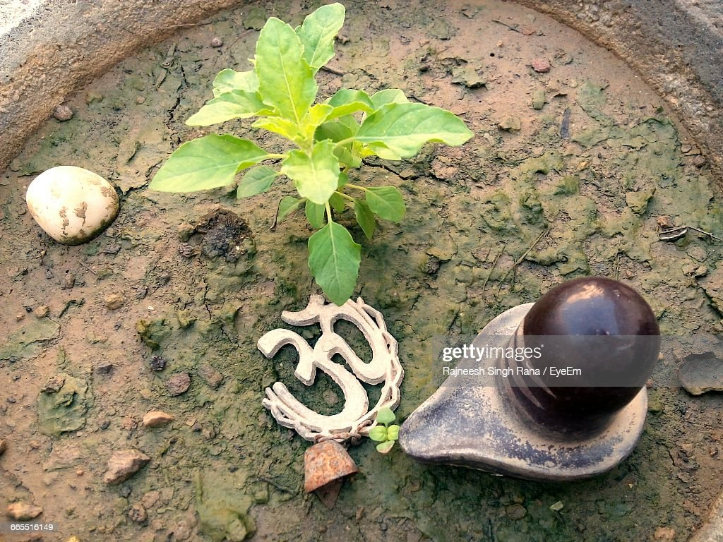 High Angle View Of Lingam And Om Symbol In Basil Potted Plant : Stock Photo