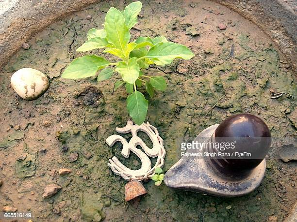 high angle view of lingam and om symbol in basil potted plant - hindu god stock photos and pictures