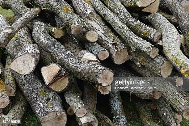 High Angle View Of Logs On Field
