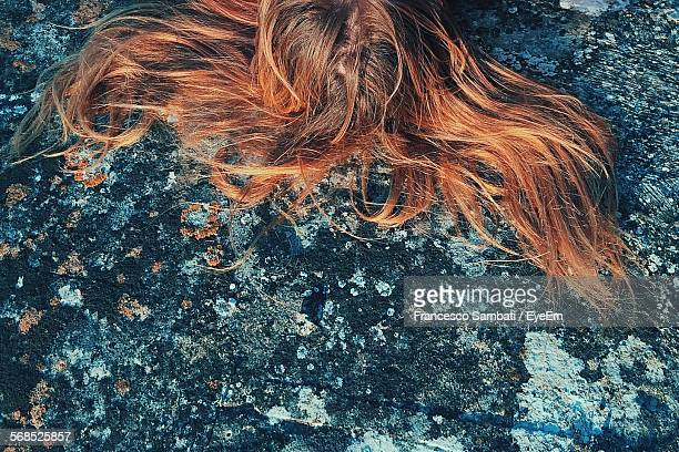 High Angle View Of Long Brown Hair On Rock