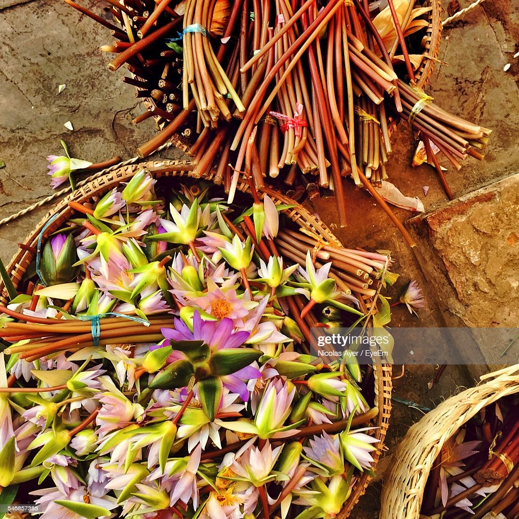 High angle view of lotus flowers in basket in market for sale stock high angle view of lotus flowers in basket in market for sale izmirmasajfo