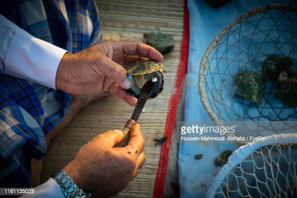 high angle view of man removing pearl in seashell outdoors - gulf countries stock pictures, royalty-free photos & images