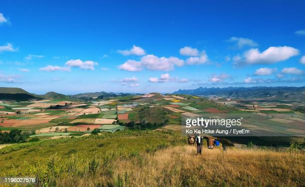 high angle view of man standing on field against sky - ko ko htike aung stock pictures, royalty-free photos & images