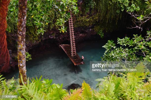 high angle view of man standing on pier over lake - samoa stock pictures, royalty-free photos & images