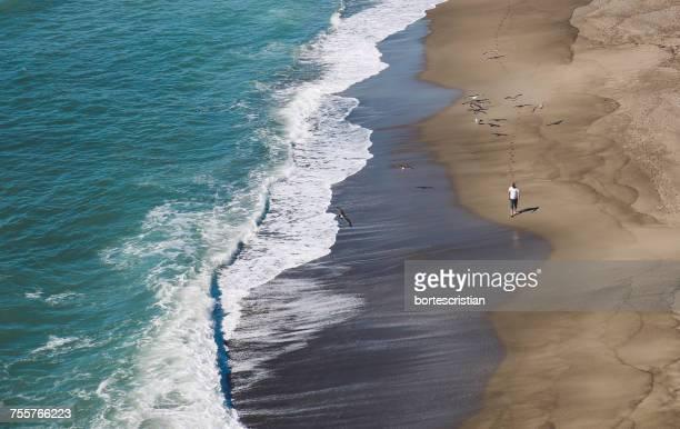 high angle view of man walking on beach - bortes fotografías e imágenes de stock