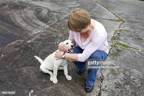 high angle view of mature woman with dog - cavan images foto e immagini stock