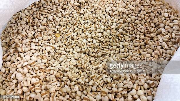 high angle view of millets - millet stock pictures, royalty-free photos & images