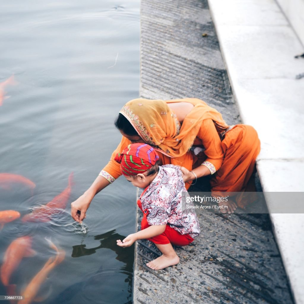 High Angle View Of Mother And Son Looking At Koi Carps In Lake