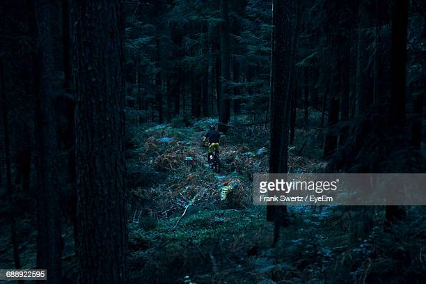 high angle view of mountain biker in the forest - frank swertz stockfoto's en -beelden
