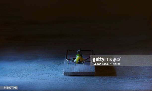 High Angle View Of Mousetrap With Cheese On Table
