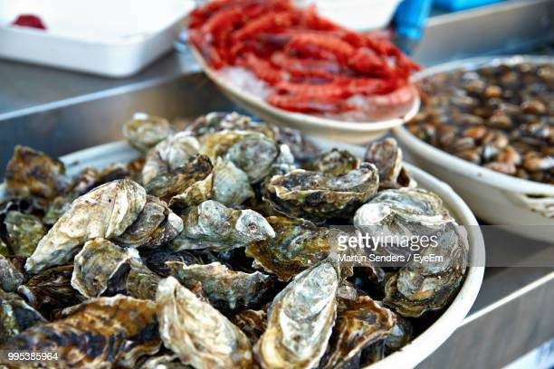 high angle view of mussels in container - les pouilles photos et images de collection