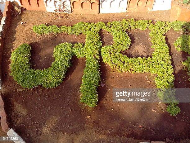 High Angle View Of Non-Western Script Made With Grass Outside Temple