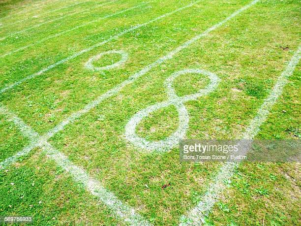 High Angle View Of Number On Grassy Field