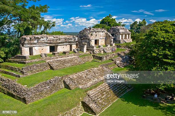 High angle view of old ruins of buildings, North Group, Palenque, Chiapas, Mexico