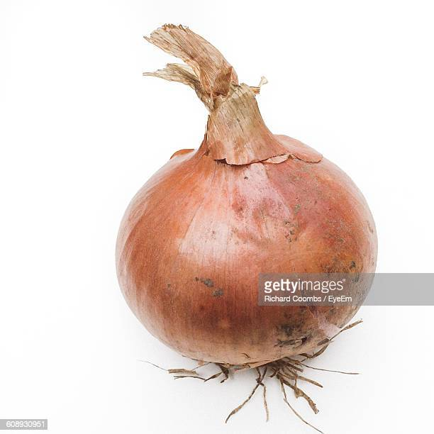 High Angle View Of Onion On White Background
